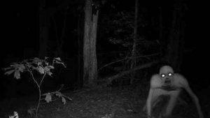 Strane presenze ad Halloween. Paura e mistero
