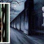 Le prove del fantasma Resurrection Mary - Foto