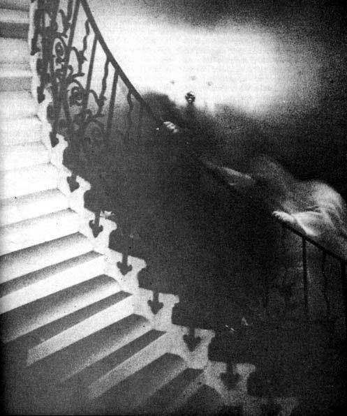 La Scala dei tulipani e la foto del fantasma
